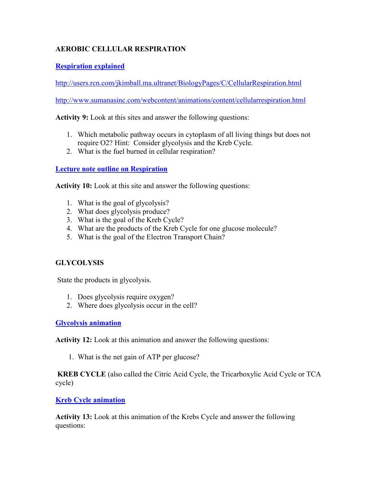 General Cellular Respiration Worksheet Answer Key