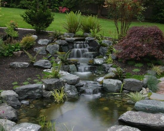 Naturalistic Pond Design Pictures Remodel Decor And