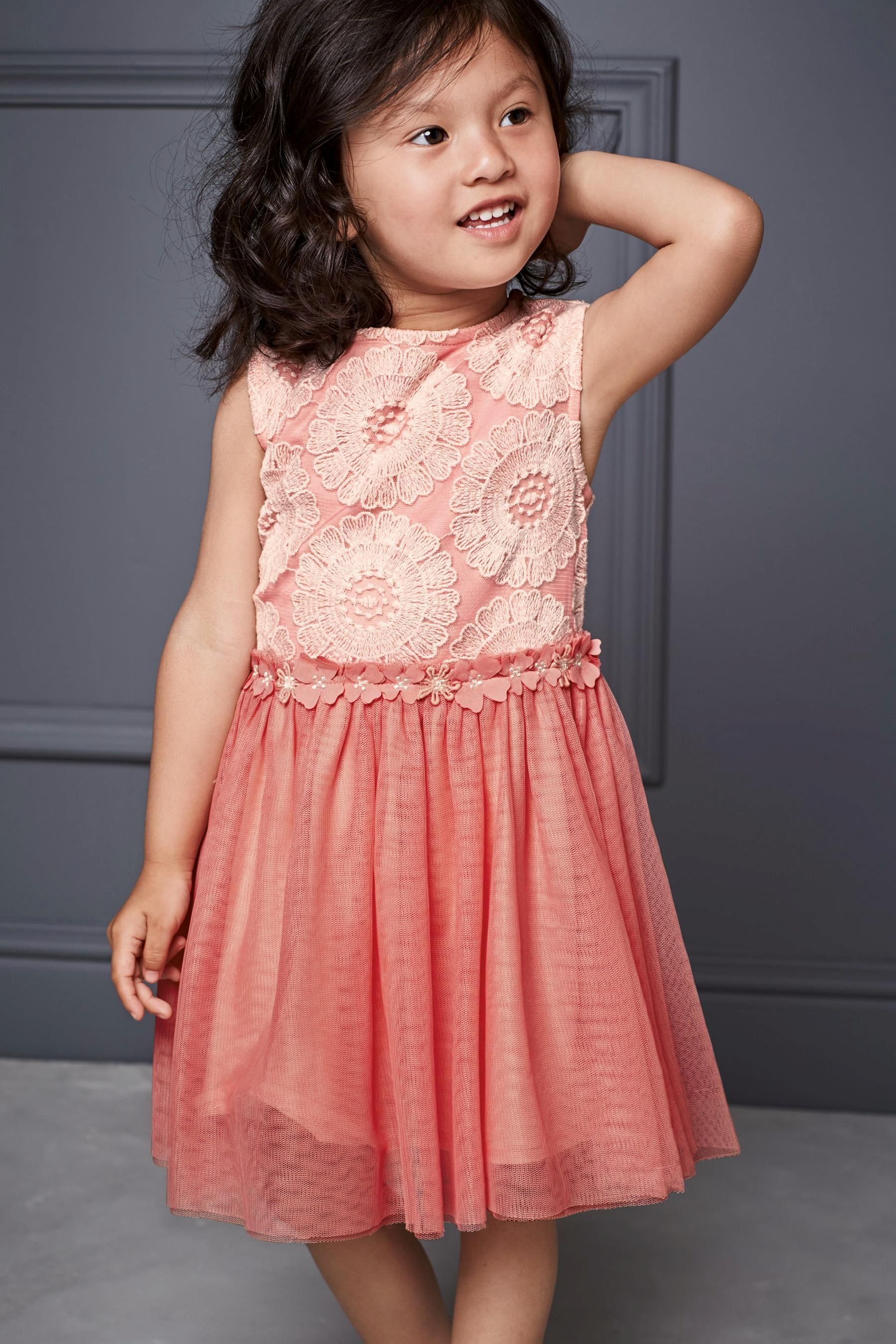 Buy Pink Floral Lace Party Dress (3mths-6yrs) from the Next UK ...