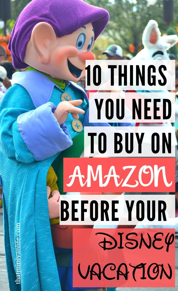 The Ten Things You Need to Buy on Amazon Before Your Disney Vacation ~ That Minivan Life
