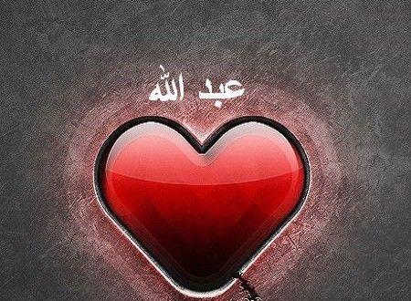 صور اسم عبدالله 2015 خلفيات اسم عبود رائعه رمزيات اسم عبدالله جديده Heart Ring Love Photos Jewelry