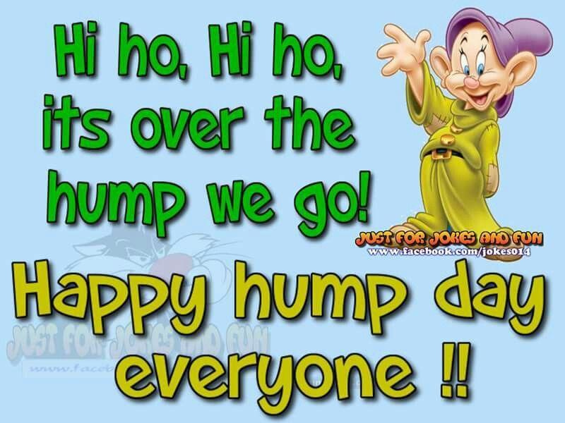 Happy Hump Day Everyone | Happy wednesday quotes ...
