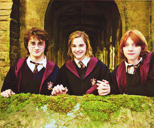 Lou Adli Kullanicinin Harry Potter Panosundaki Pin Harry Potter Filmleri Harry Potter Hermione Granger