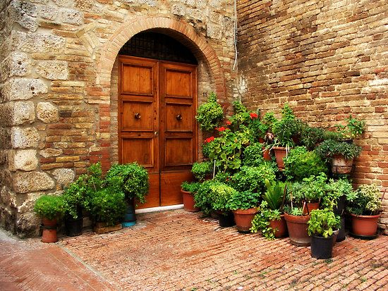 Is the door more beautiful than the plants or vice-versa?