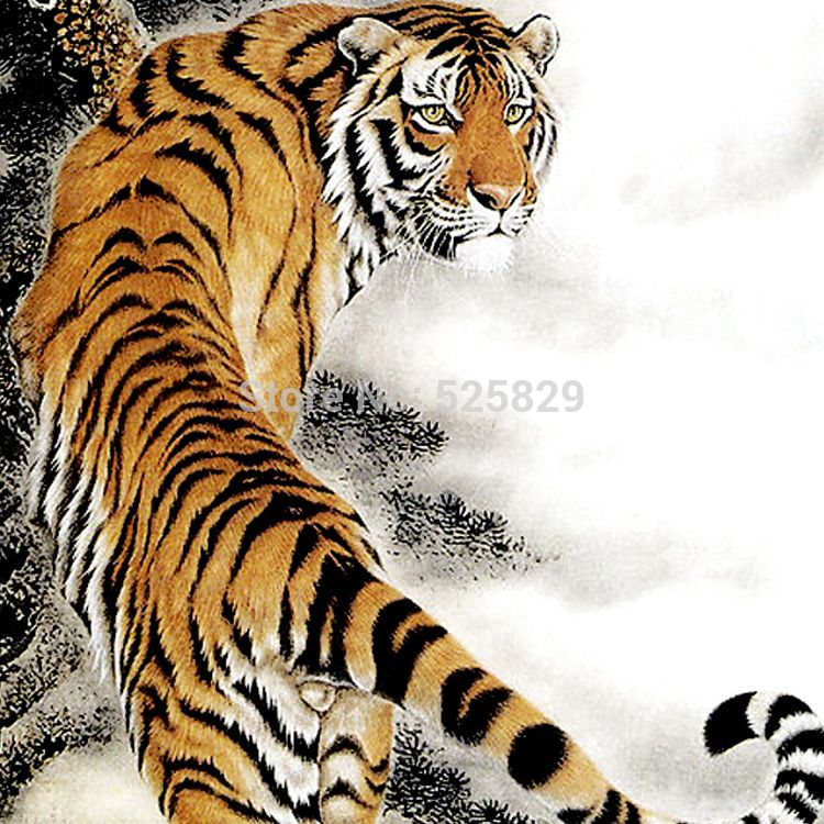 White tigers are hunted by poachers and used for Chinese medicine ...