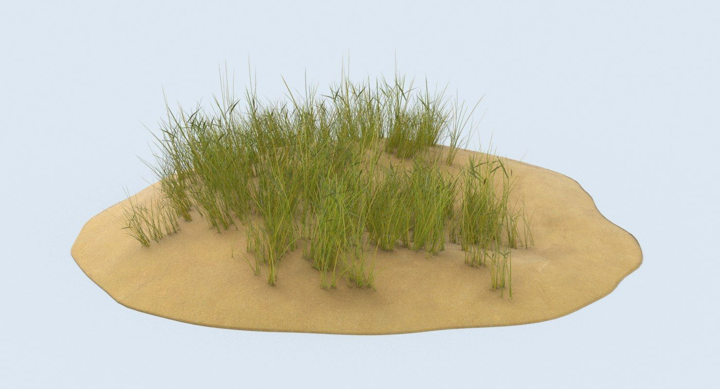 Pin By Turbosquid On Plant 3d Models Sand Dunes Grass Sand