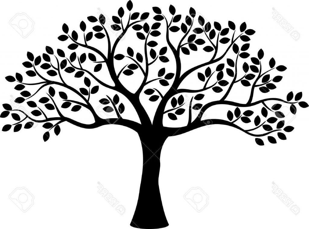 African American Family Tree E Clipart Black And White Free Download Best Template Tree Silhouette Family Tree Clipart Tree Stencil
