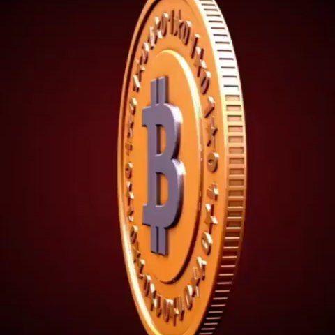 Mistertingo crypto trading business