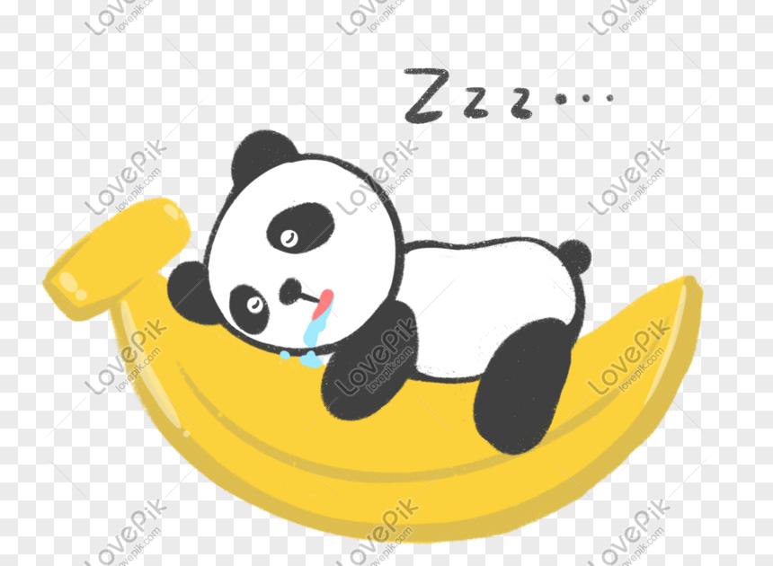 21 Gambar Kartun Panda Tidur Pakai Selimut Biar Nggak Kedinginan Kisah Tidur Kedua Bayi Panda Kebiasaan Baik Kartun Anak Bahasa Indonesia Panda Kartun Tidur