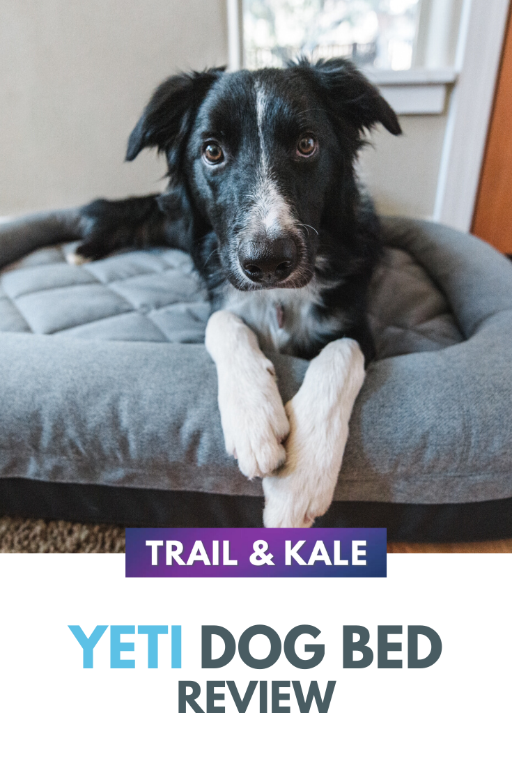 YETI Dog Bed Review 2020 Is The Trailhead Bed Worth It