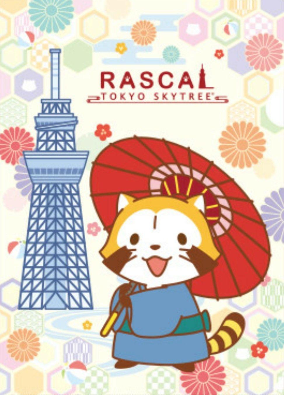 Rascal かわいいイラスト 可愛いイラスト アライグマ