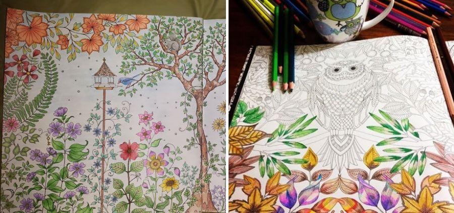 Восхитительная раскраска для взрослых | Книжка-раскраска ...