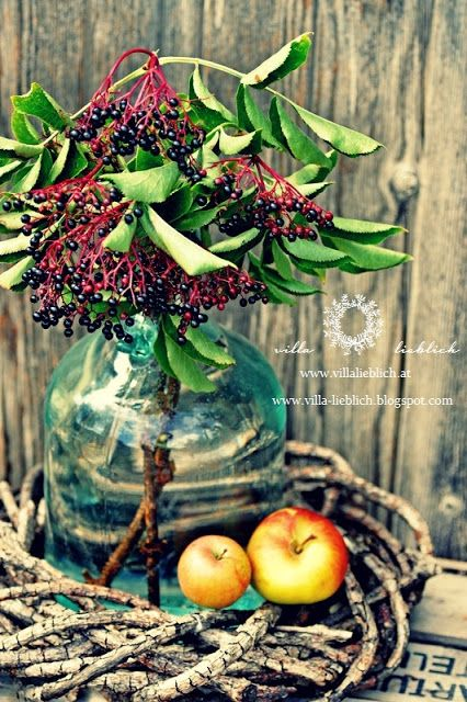 #autumn #decoration