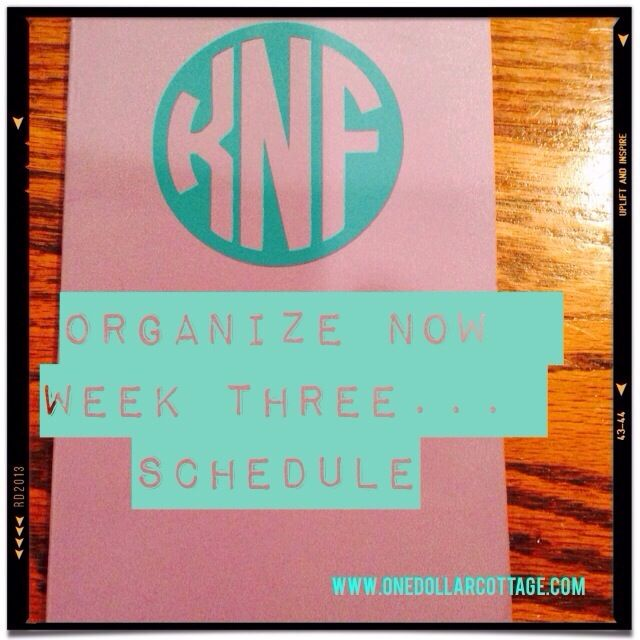 I am determined to get all of my stuff organized this year. There is a great book that I found on Amazon, organize now, by Jennifer Ford Berry. The thing I really love about this book is that it is broken up in to weeks. There is a project for every week of the year, …