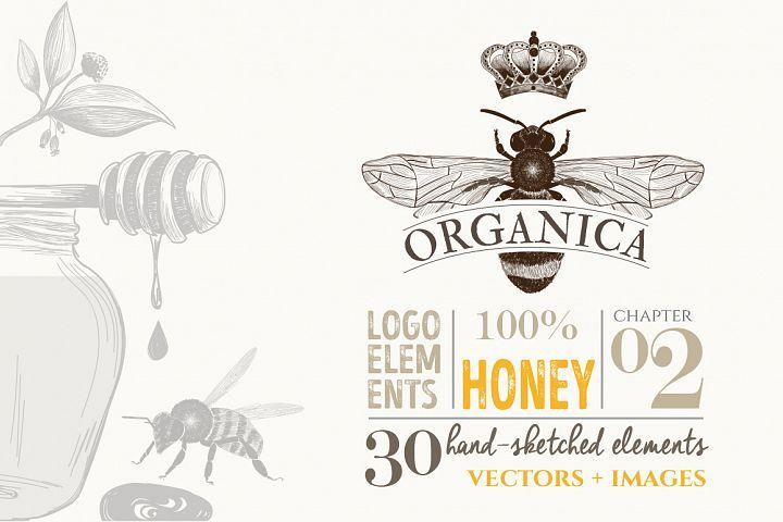 ORGANIC LOGO ELEMENTS – HONEY from DesignBundles.net