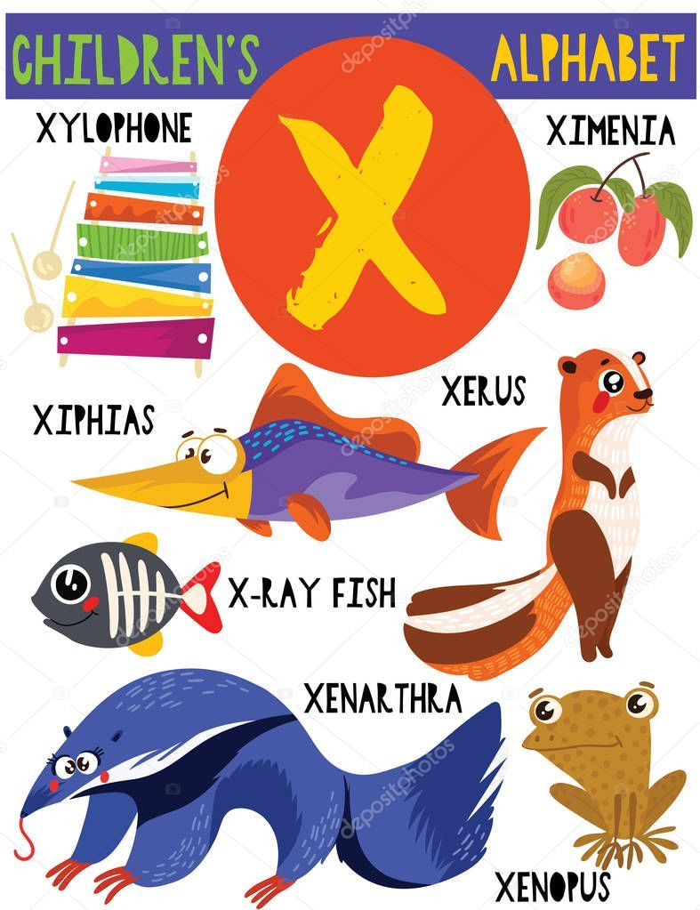 Letter X.Cute children's alphabet with adorable animals