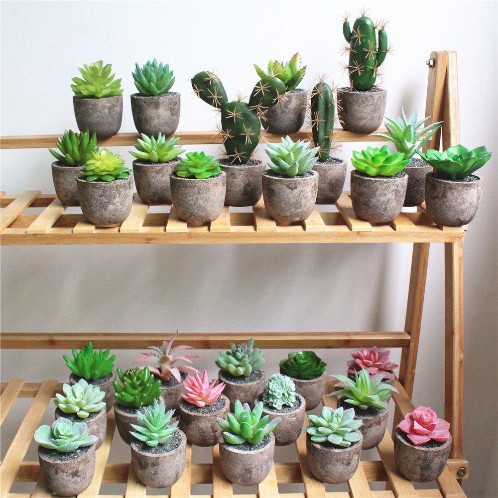 Natural Decorative Pots With Natural Plants Succulents Www Kdeco Ro Www Facebook Com Kdeco Ro Www Wonderfult Decorated Flower Pots Succulent Pots Flower Pots