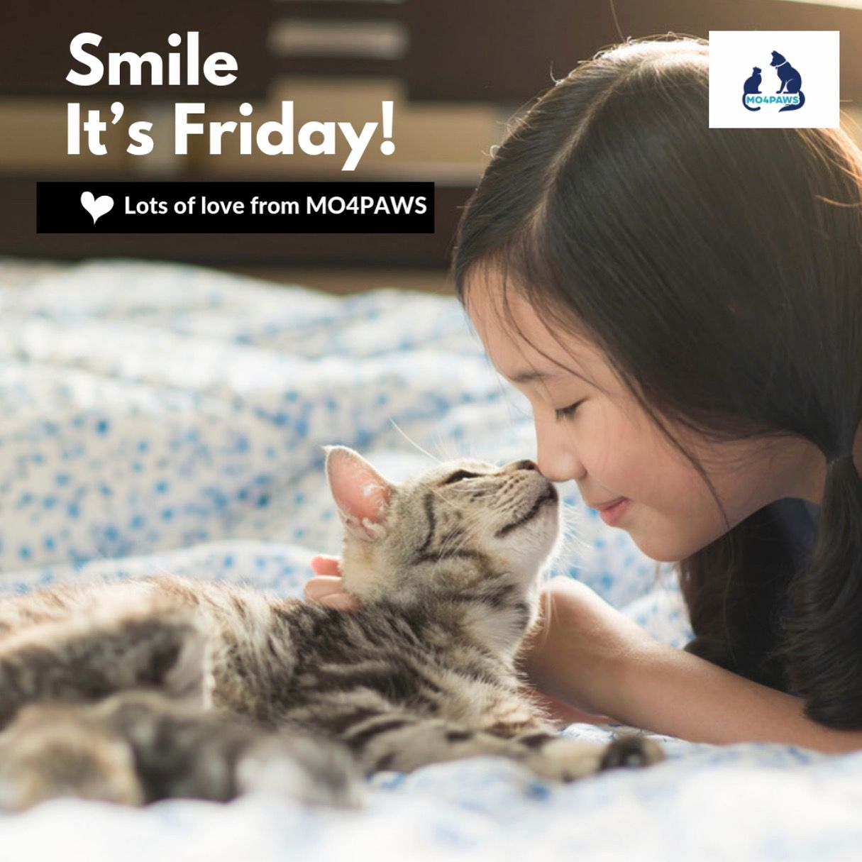 Happy Friday to everyone from the MO4PAWS team! mo4paws