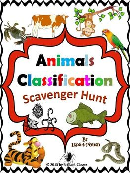 animals classification scavenger hunt school animal classification classifying animals y. Black Bedroom Furniture Sets. Home Design Ideas