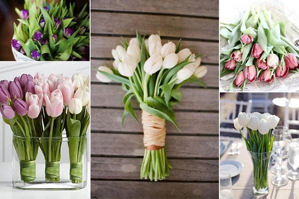 tulpenbl te hochzeit pinterest tulpe fr hlingsblumen und tischdeko hochzeit. Black Bedroom Furniture Sets. Home Design Ideas