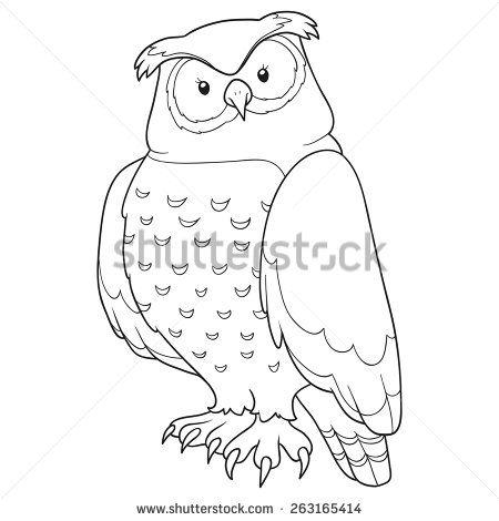 Coloring Book Owl Stock Vector Libro De Colores Libros Para Colorear Adultos Fotos De Buhos