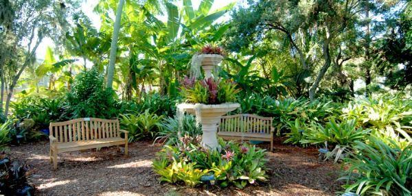 Marie Selby Botanical Gardens Botanical Gardens Florida Attractions Sarasota