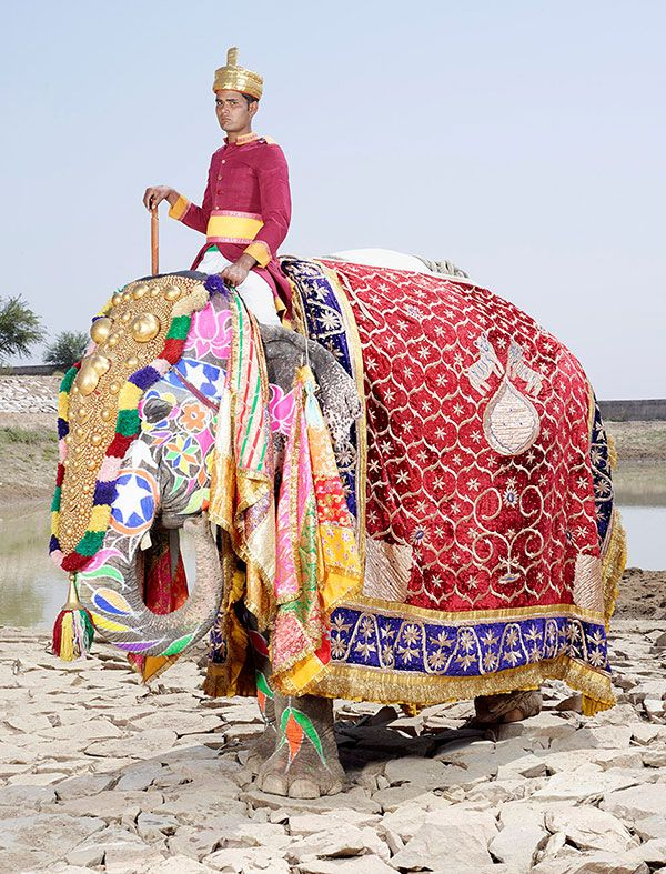 The Painted Elephants of Rajasthan: Photos by Charles Freger | Faith is Torment…