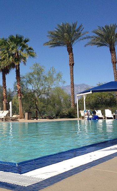 Ep. 6 Coachella - Soaking up some rays in #PalmSprings before heading to Coachella | #MyReality #bariii