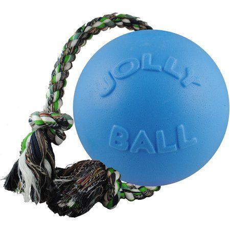 Jolly Pets 4 5 Inch Romp N Roll Blueberry Multicolor In 2020