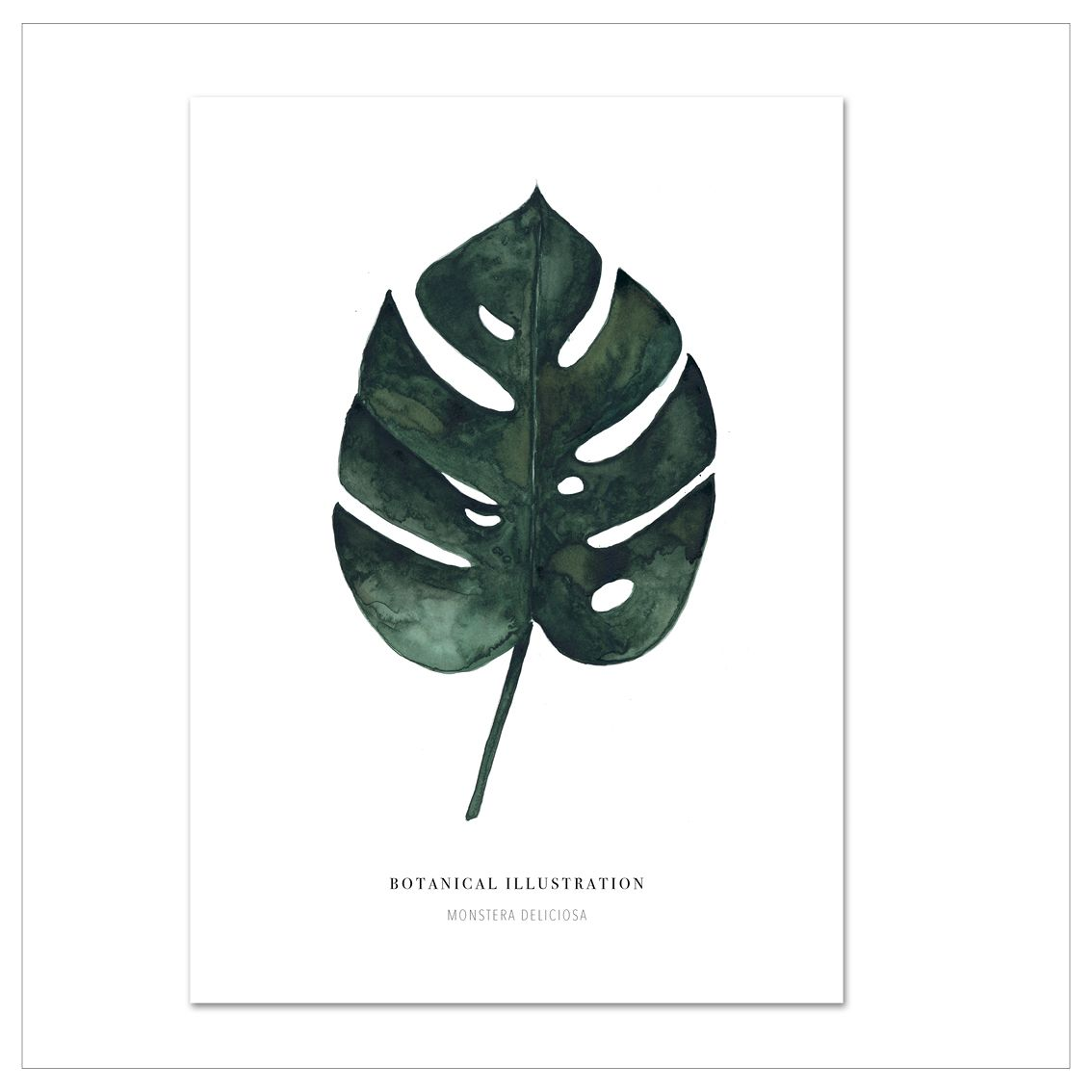 Kunstdruck Monstera Deliciosa · Illustration & Papeterie · Leo la Douce