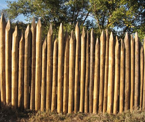 CHAP 8: This Fence Is A Replica Of A Palisade Fence Which Is A Wall