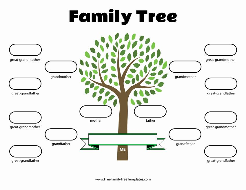 40 Family Tree Template Online Family Tree Printable Blank