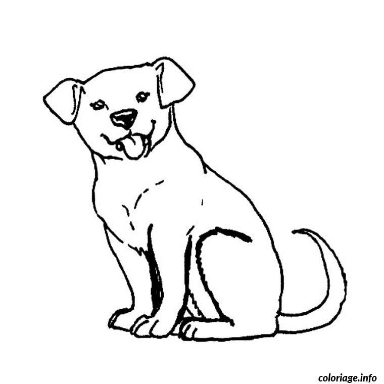Coloriage Chiot Labrador Dessin A Imprimer Chien A Colorier Dessin De Chien Chien Coloriage