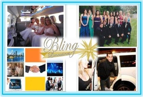 At Bling Limousines, we have a fleet of immaculately interiorized vehicles that exhibit a sheer sense of elegance and luxury. We add to the pleasure of your sightseeing, airport transfers and pickups and drops.
