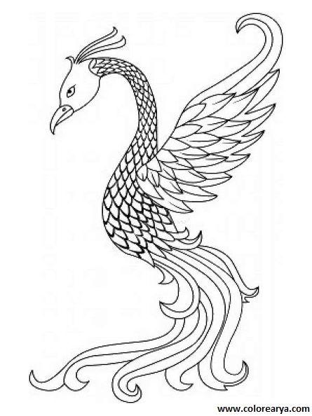 Dibujos Colorear Animales Mitologicos 5 Dibujos Colorear