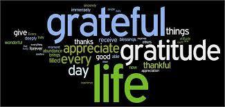 gratitude quotes - Google Search