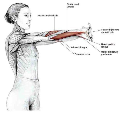 this is a great stretch for anyone using their hands and