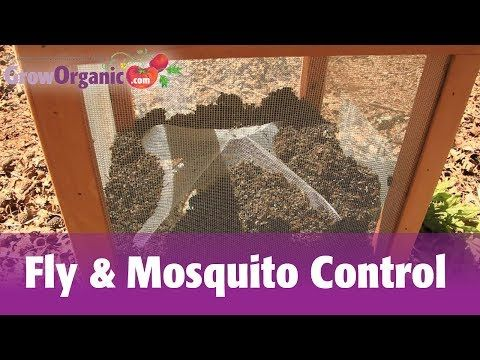 how to get rid of flies on patio