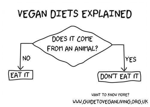 Flow Chart Explaining A Vegan Diet Vegan Propaganda Vegan Diet