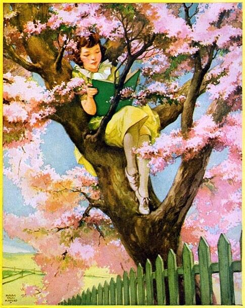 Reading up in a tree (Miriam Story Hurford)