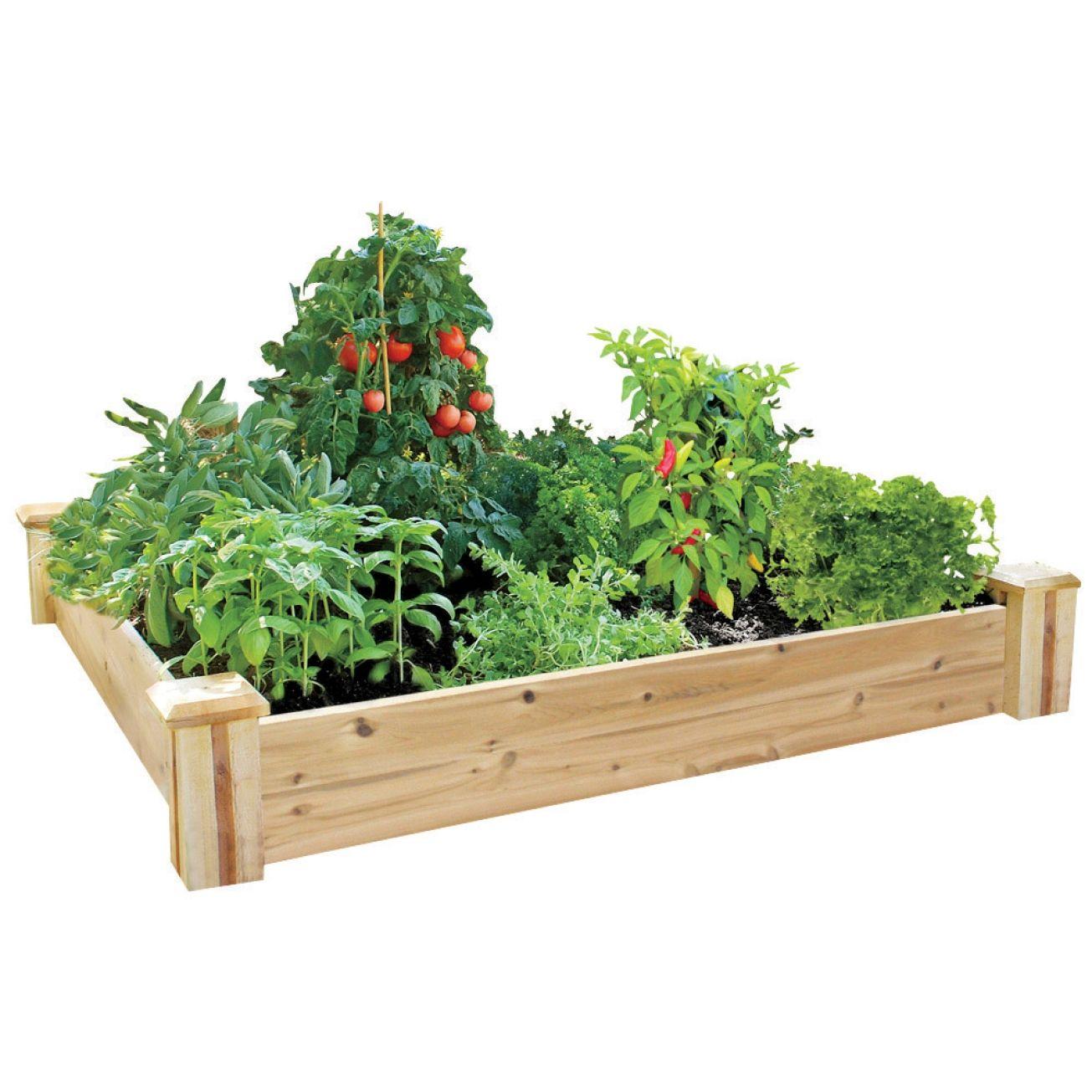 Greenes Cedar Raised Garden Kit Rc4c4 Specialty Garden