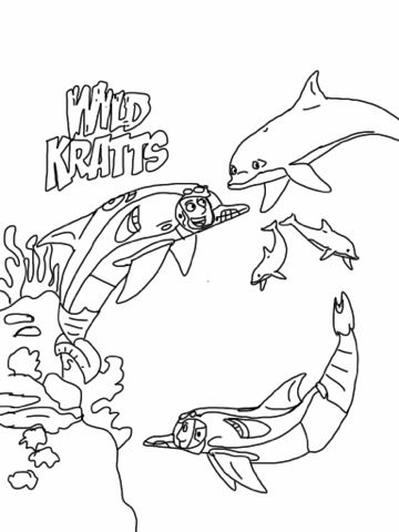 Wild Kratts Dolphin Coloring Page | Wild Kratts | Pinterest | Wild ...