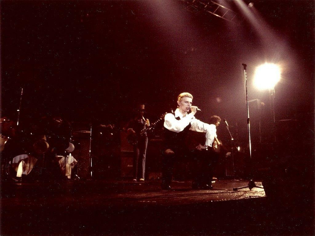 David Bowie played at Wings Stadium in Kalamazoo, Michigan