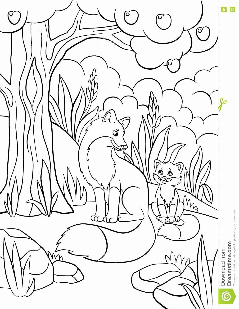 Wild Animals Coloring Pages Printable Awesome Coloring Pages Wild Animals Mother Fox With Her Little
