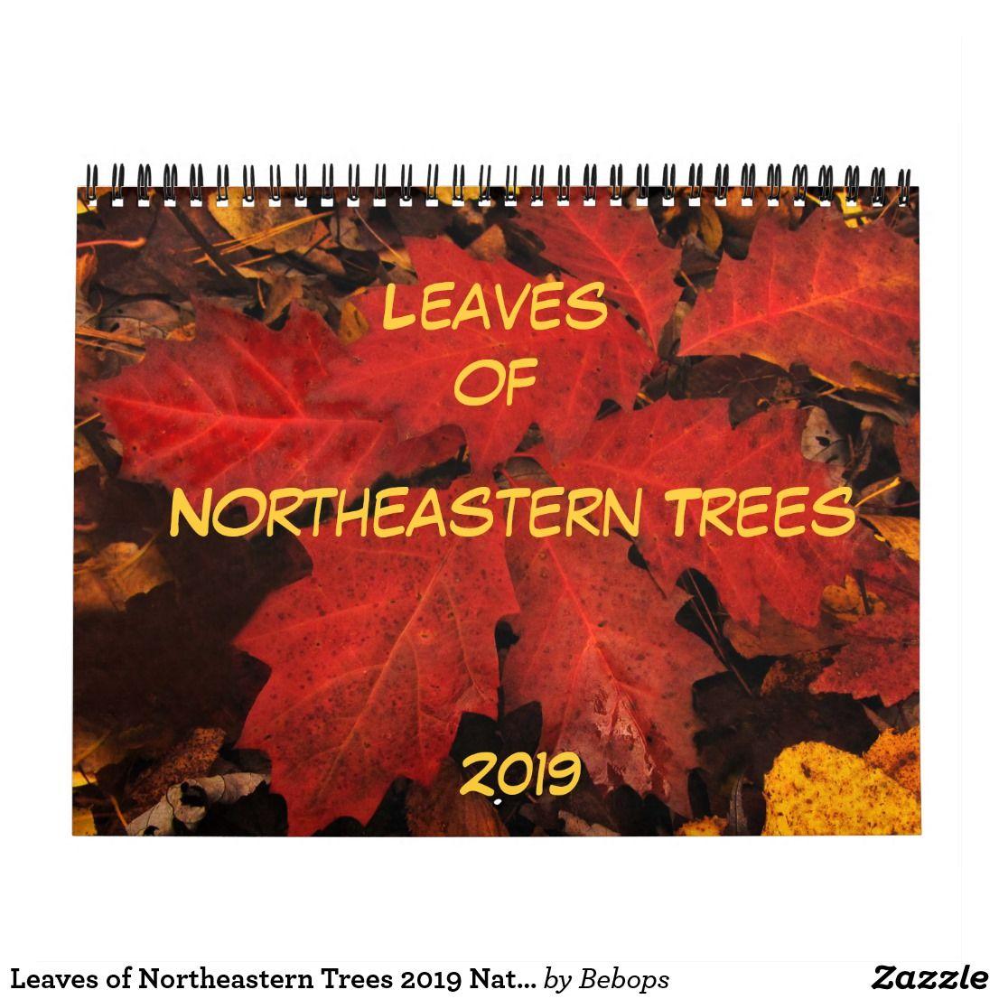 Leaves Of Northeastern Trees 2019 Nature Calendar 2019 Calendars