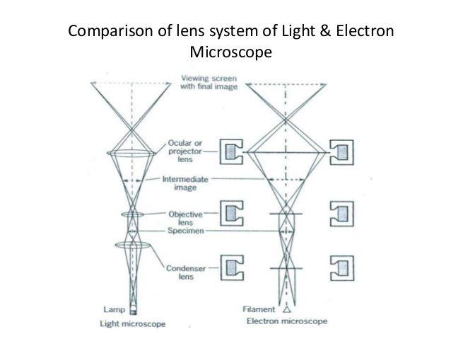 Electronic microscope principle recherche google microscopes electronic microscope principle recherche google ccuart Gallery