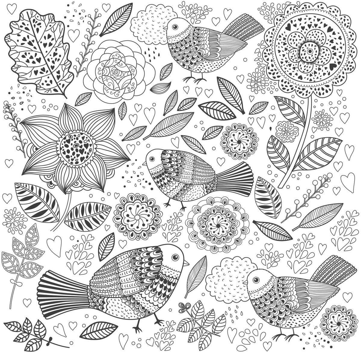 Птицы в цветах. Раскраска антистресс | Раскраски, Рисунок ...