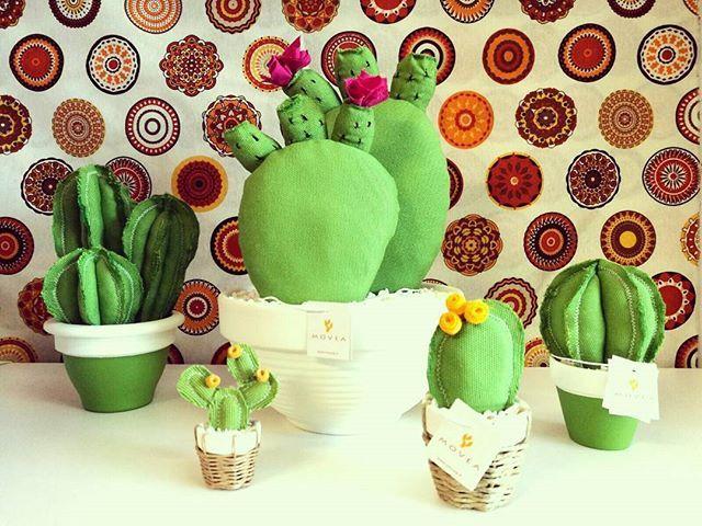 Cactus Arredamento ~ Movea to be continued cactuslover ficodindia greendesign love