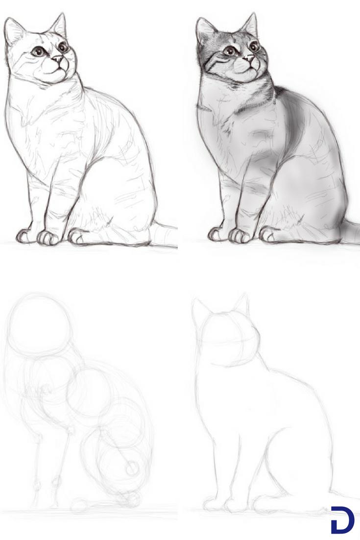 comment dessiner un chat apprendre dessiner avec. Black Bedroom Furniture Sets. Home Design Ideas