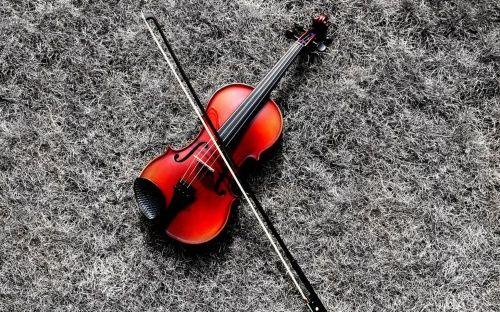 Still Life - Violin, Photo, Color, Wall, Black, Music, Guitar, Still Life, Processing, Digital